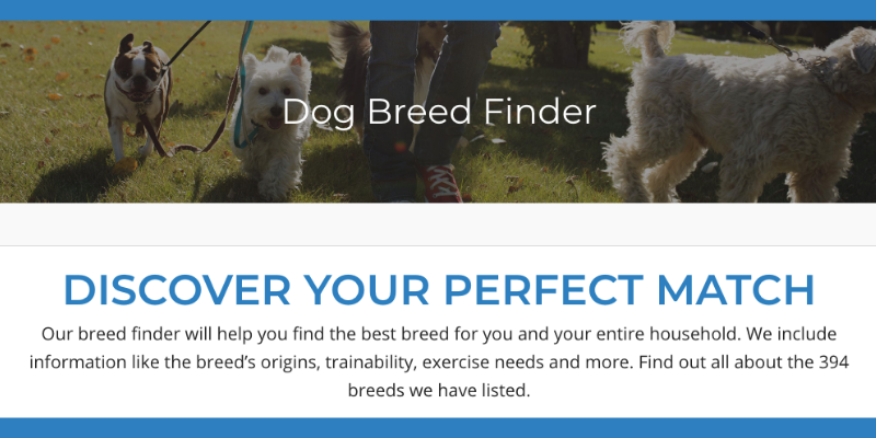 PuppyViewer's Dog Breed Finder