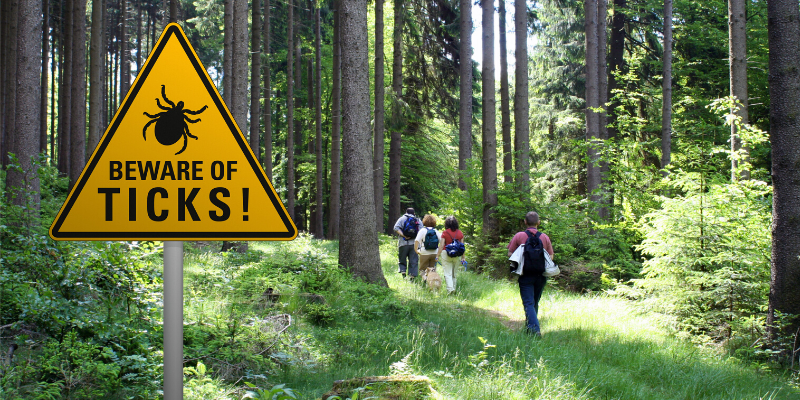 Caution sign for ticks with hikers and a dog walking through a forest.